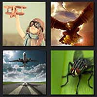 4 pics 1 movie answer cheat The Fly