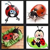 4 pics 1 movie answer cheat Ladybugs