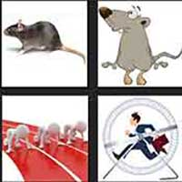 4 pics 1 movie answer cheat Rat Race