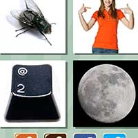 4 pics 1 song answers and cheats level 266