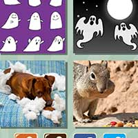 4 pics 1 song answers and cheats level 476