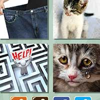 4 pics 1 song answers and cheats level 551