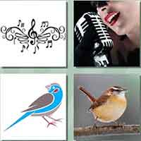 4 pics 1 song answers and cheats level 81