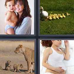 4 pics 1 word answers and cheats level 325