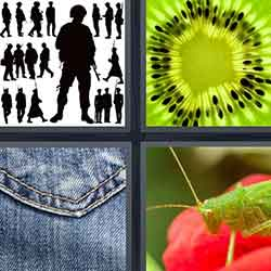 4 pics 1 word answers and cheats level 744