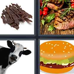 4 pics 1 word answers and cheats level 1000