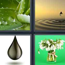 4 pics 1 word answers and cheats level 1257