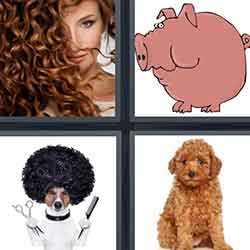 4 pics 1 word answers 5 letters pt 26 4 pics 1 word answers and cheats level 1727 expocarfo Images