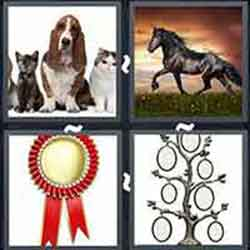 4 pics 1 word answers 8 letters pt 24 4 pics 1 word answers and cheats level pedigree expocarfo Image collections